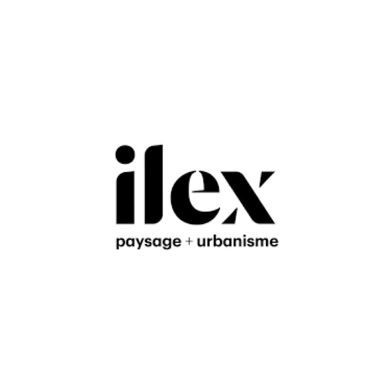 Ilex Paysages