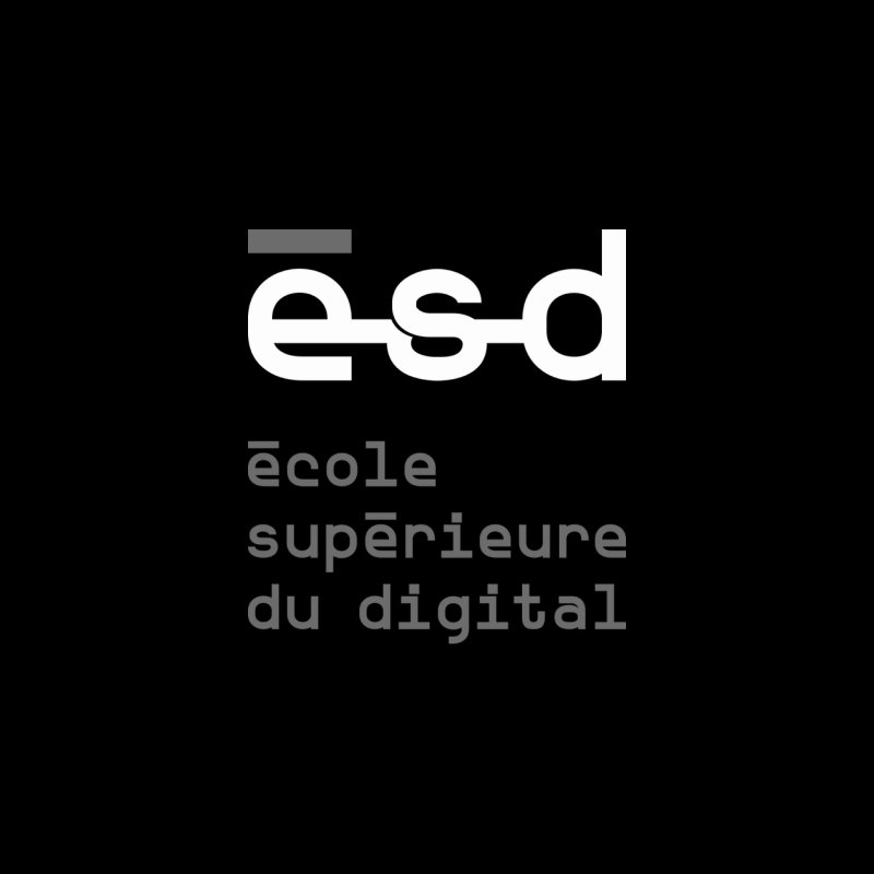 Ecole Superieure Digital